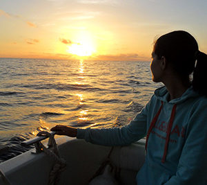 Cruzeiro ao Pôr-do-sol